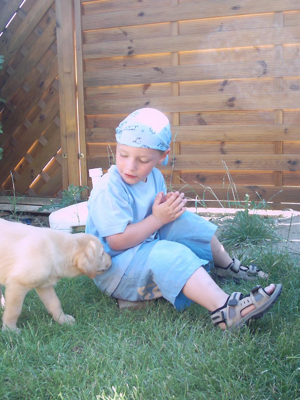 Hunde und ihre Kommunikation,   Kinder und Hunde