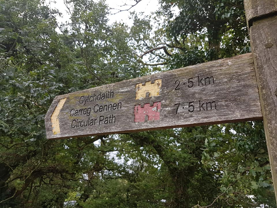 Wandern in Wales mit Hund – auf den Spuren der Kelten