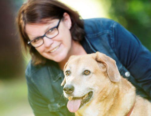 Empathie im Hundetraining